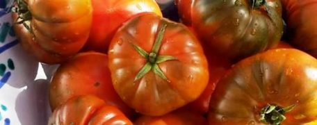 Woodfired Tomatoes