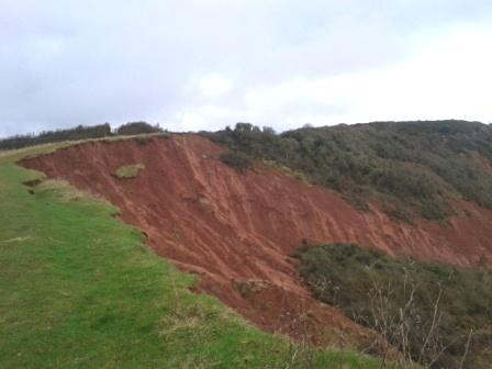 Landslip near Budleigh Salterton
