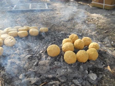 Dung fired Baati