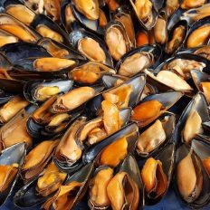 Woodfired Mussels a la Plancha